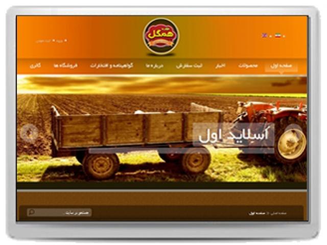 طراحی سایت شرکت همگل